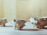 NYでも活躍されている!大塚人詩江さんによる陶芸体験会レポート