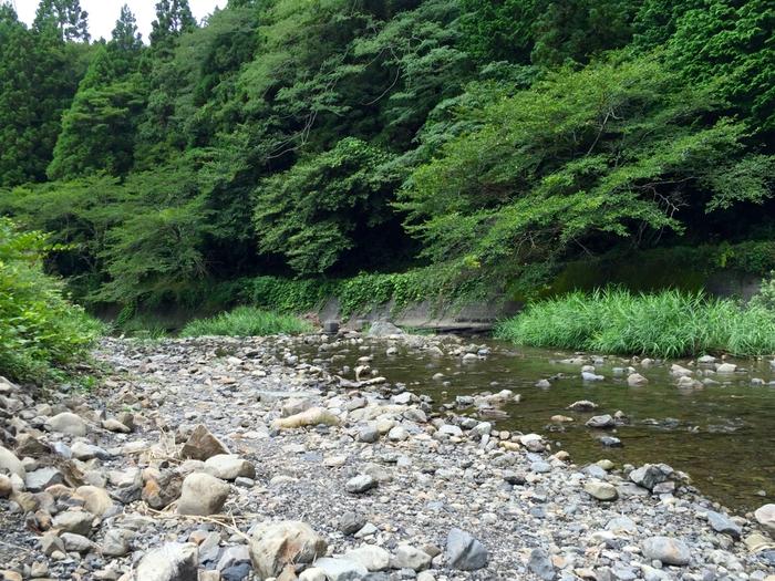 ならここの里 キャンプ場 原野谷川 川遊び 掛川市