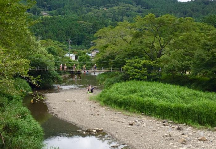 ならここの里 キャンプ場 原野谷川 川遊び 掛川市 吊り橋