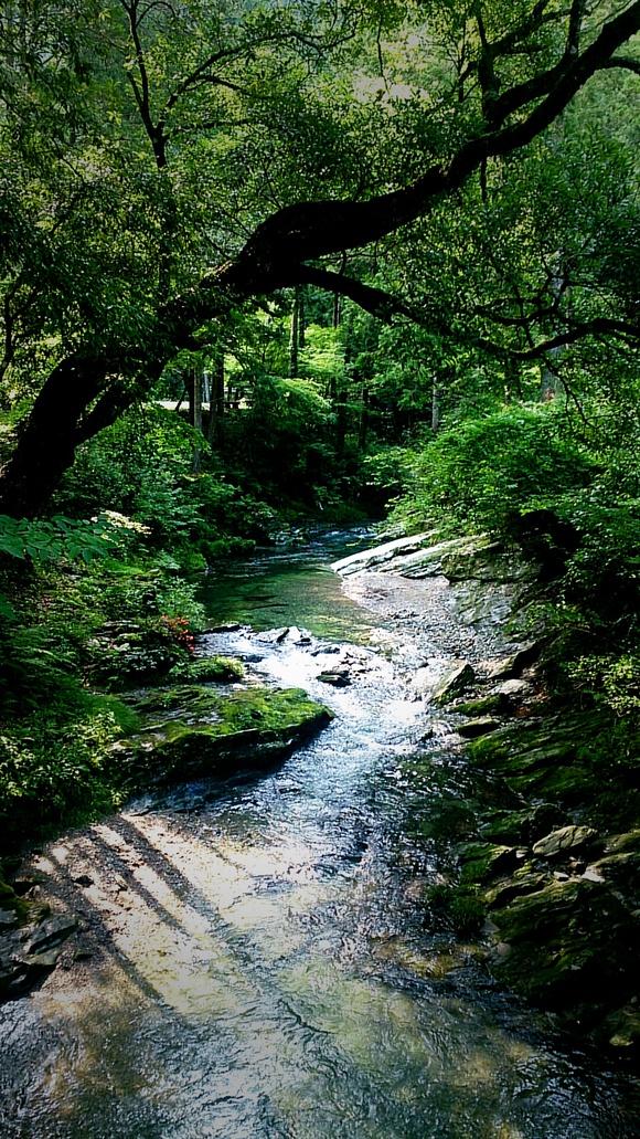 阿多古川 天竜川 川遊び 渓流 渓谷 上流