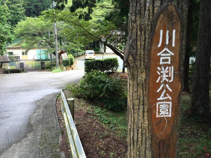 川合渕公園 引佐町 西久留女木 川遊び 渋川 都田川