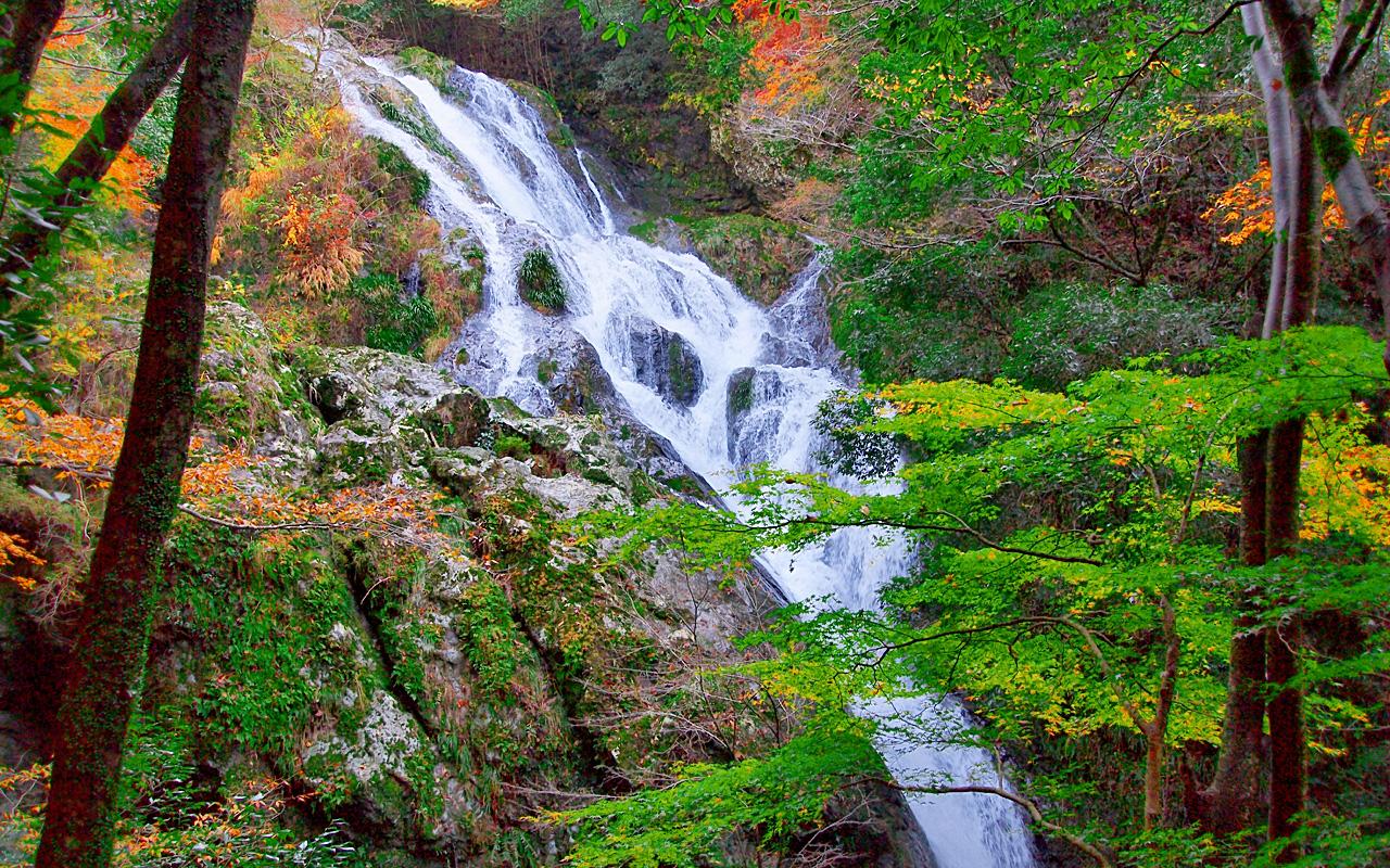 静岡県浜松百間滝です。