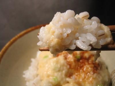 麦飯の画像 p1_8